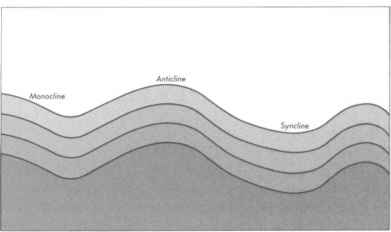 Anticline Syncline Monocline