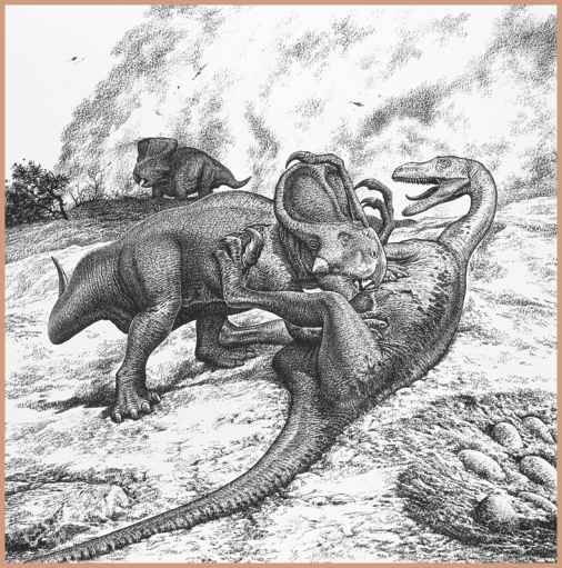 Protoceratops Fighting