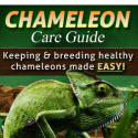 Chameleon Care Guide - Only Product In Booming Niche - 75% Commissions