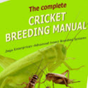 The Complete Cricket Breeding Manual