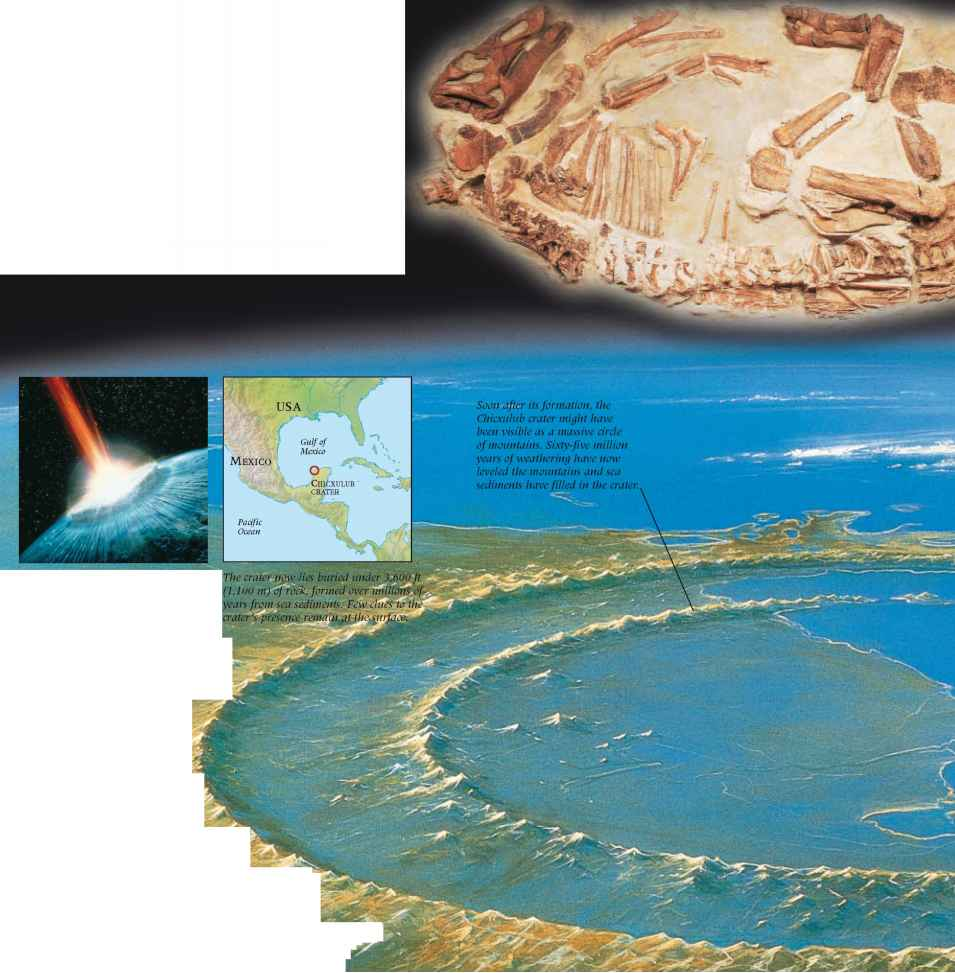 Prehistoric Craters Earth