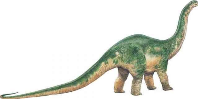 Zephyrosaurus - Dinosaurs Timeline - Prehistoric Life